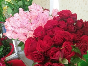 Shop hoa tươi phú yên >> shop hoa tươi tại Tuy Hòa Phú Yên