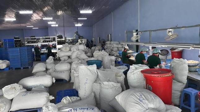 Thiết bị điện nhẹ Phú Yên - Lắp đặt thiết bị điện nhẹ tại Phú Yên