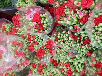 hoa tuoi bạc liêu, shop hoa tươi bạc liêu, shop hoa tươi tại bạc liêu,