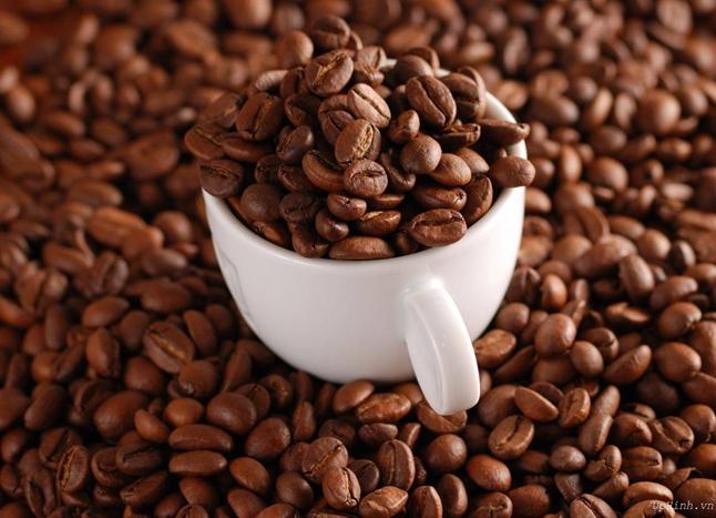 hãng cafe bột tại đắc lăk » cafe bột đak lak