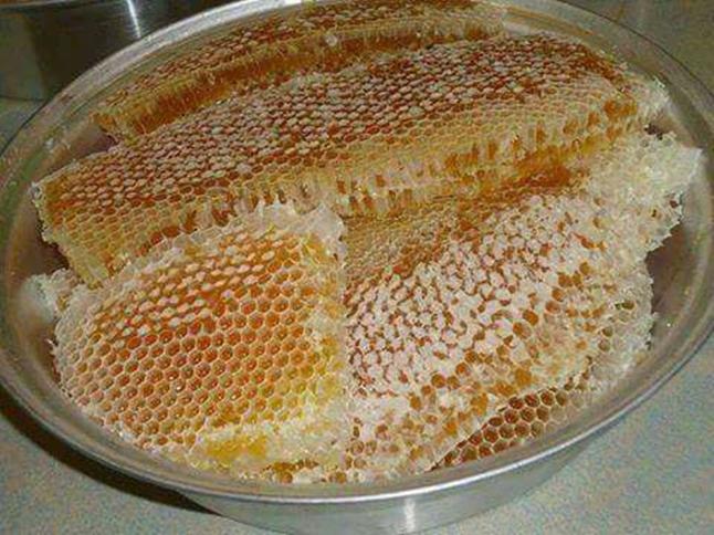 mật ong daklak